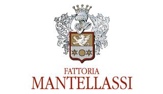 logo_Mantelassi